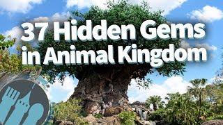 37 Hidden Gems in Disney's Animal Kingdom!