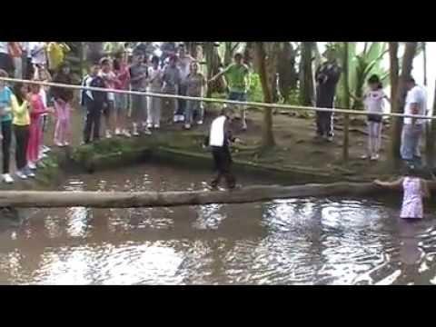 Perfeccionamiento, formación y especialización de Bomberos de Sevilla from YouTube · Duration:  2 minutes 18 seconds
