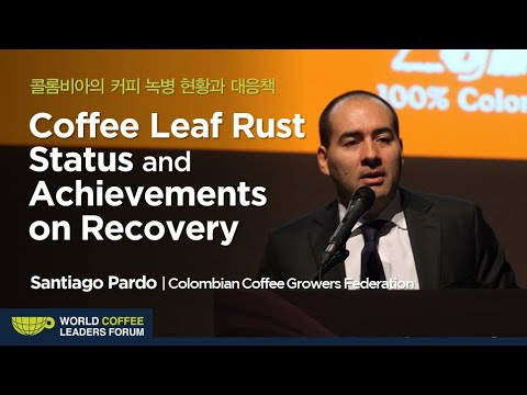 """[WCLF2013] """"Coffee Leaf Rust Status and Achievements on Recovery with New Varieties in Colombia"""""""