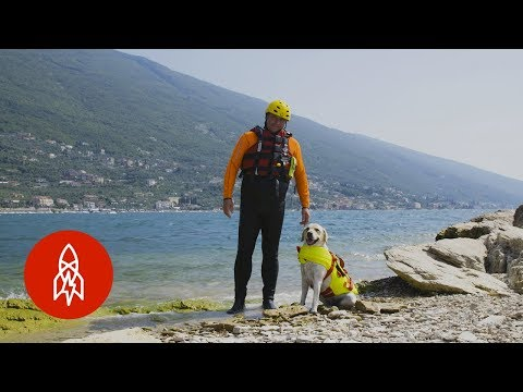 The Dog Lifeguards of Italy