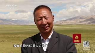 《走遍中国》 20191010 顿珠的新居| CCTV中文国际