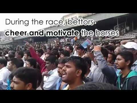 Horse racing in India- Betting and lot more!