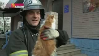 NEWS #2  Взрыв на севере Москвы ''2 Часть''