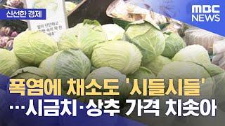 [신선한 경제] 폭염에 채소도 '시들시들'…시금치·상추…