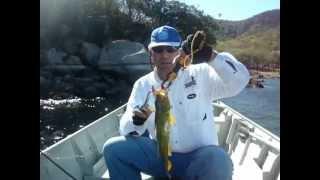 Pesca de Tucunarés em Sobradinho - BA