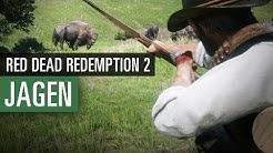 Red Dead Redemption 2 JAGEN | Alles was ihr zur Jagd wissen müsst!