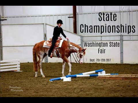 4-H State Championships 2017// Horse Show Vlog