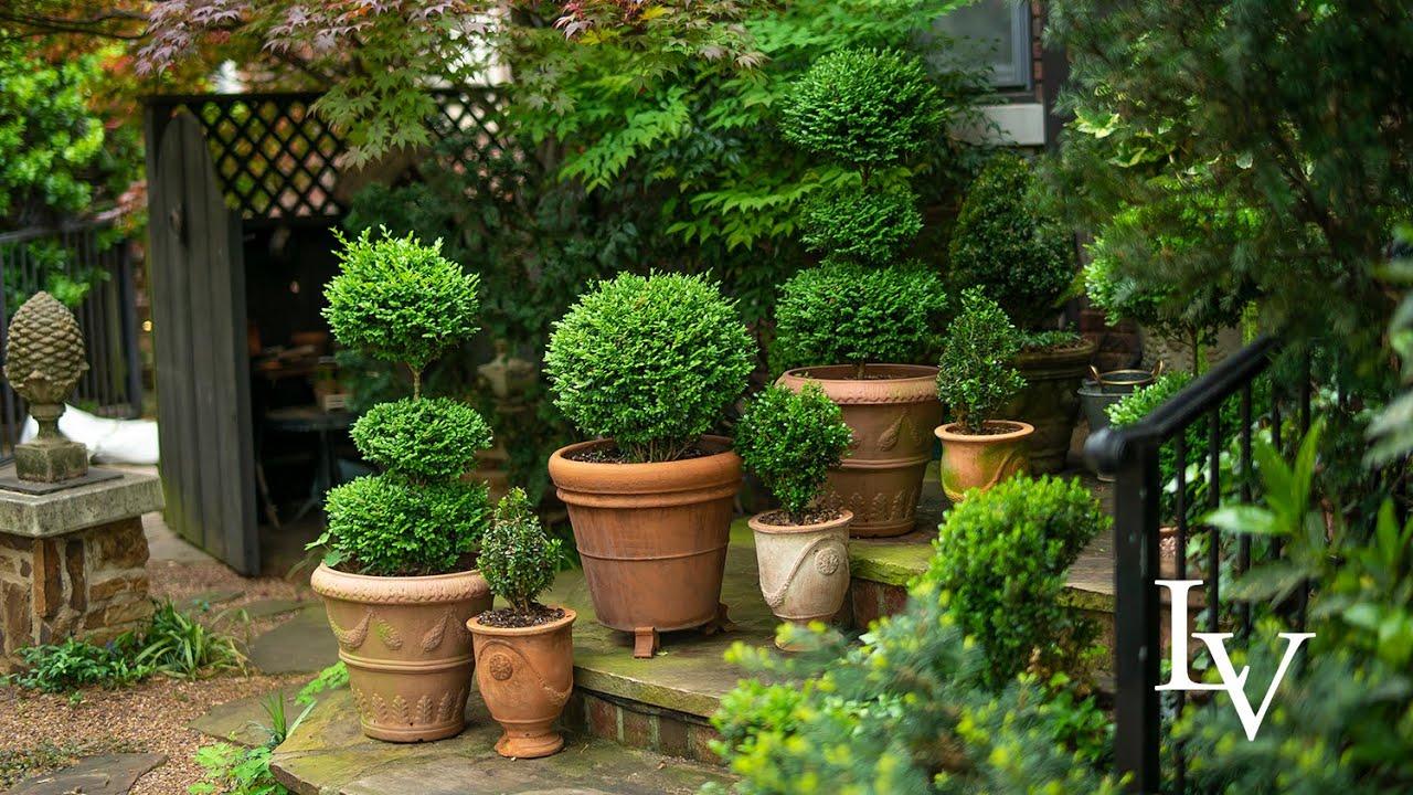 Morning Garden Tour 4 29 20 Linda Vater Youtube Garden Tours Shade Plants Garden Inspiration Backyard garden tour youtube