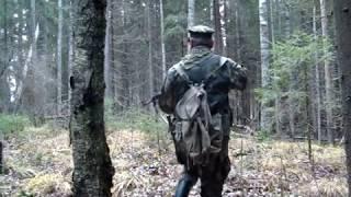 Охота в Карелии на зайца в узерку 2018 год