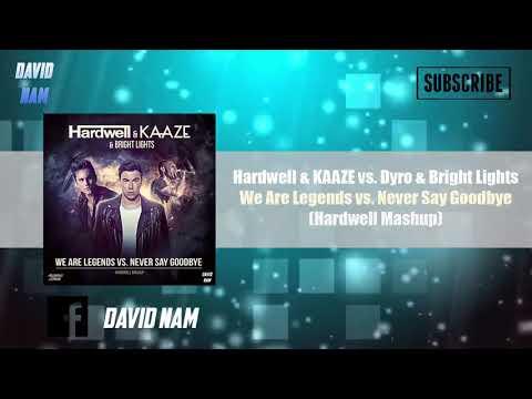 We Are Legends vs. Never Say Goodbye (Hardwell Mashup) [Alonso & David Nam Remake]