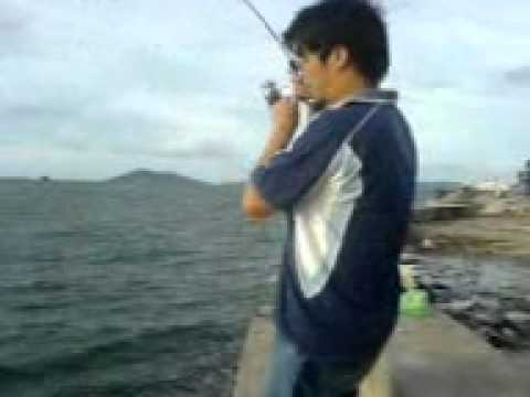2.5KG Ziu Pai caught infront of Suria Kota Kinabalu (2-1-11)