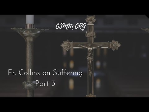Father Shannon Collins on Suffering - Part 3 of 4 - Our Sorrowful Mother's Ministry