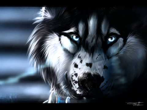 I know i 39 m a wolf nightcore youtube - Anime wolf wallpaper ...