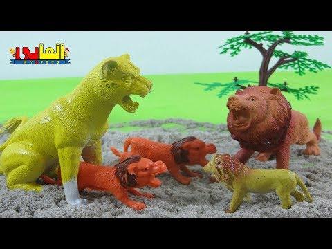 لعبة الاسد القزم وعائلته الطيبة للأطفال أجمل ألعاب حيوانات الغابة للأولاد والبنات