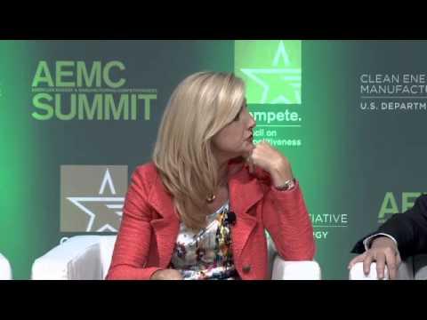 2014 AEMC Summit Panel: Accelerating Energy Productivity in an Age of Energy Abundance