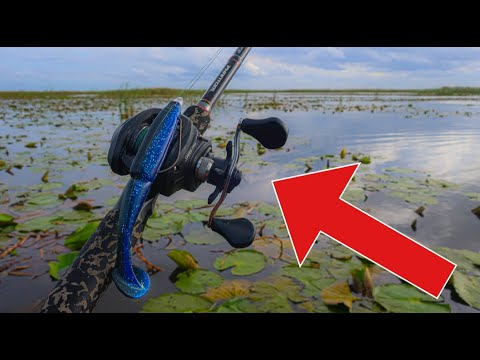 BEST Topwater Lure For GIANT Florida Bass! Lake Okeechobee (BIG BASS 2020)