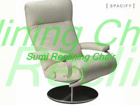 Recliner Chairs, Reclining Lounge Chairs, Contemporary Recliner Chairs