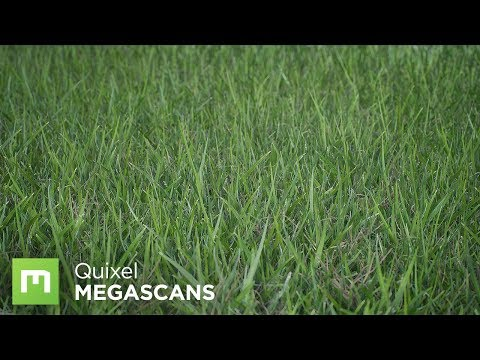 Creating Grass with Color Variation in UE4