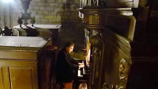 Et incarnatus est (polyphonie du Credo III) Musique : A.LESBORDES Pierre ASTOR orgue Neufchateau