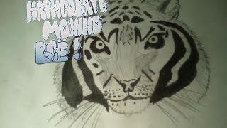 Как нарисовать тигра.(В этом видео я покажу как нарисовать тигра. моя группа в вконтакте: https://vk.com/club135227882., 2016-12-13T08:54:54.000Z)