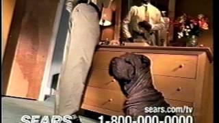 Sharpei Tv Commercial.....steam Cleaner