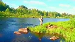 Fly fishing salmon june 2016. Simojoki