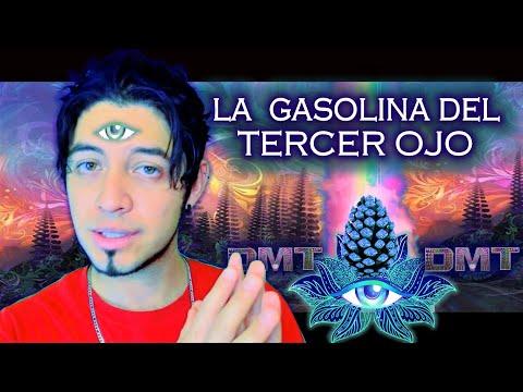 DMT: Ojos abiertos VS Ojos cerrados ¿Quién soy realmente? ¿Reencarnación? from YouTube · Duration:  7 minutes 46 seconds