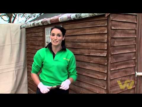 How to Paint a Timber Shed