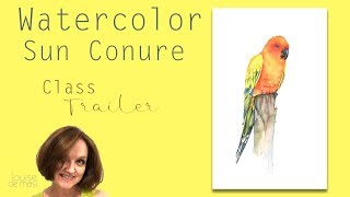 Watercolor Sun Conure Step by step
