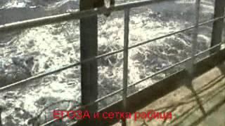Егоза и сетка рабица на корабле. Защита от пиратов(, 2011-12-01T10:00:30.000Z)