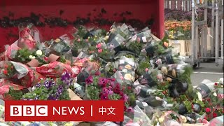 肺炎疫情:鮮花無人問津 花農親手銷毀心血- BBC News 中文