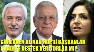 HDP Kandil'e destek veriyor mu? Halk TV'de gündemi sallayan açıklamalar