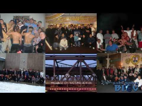 Menace of Destruction M.O.D Hmong Gang History (California)
