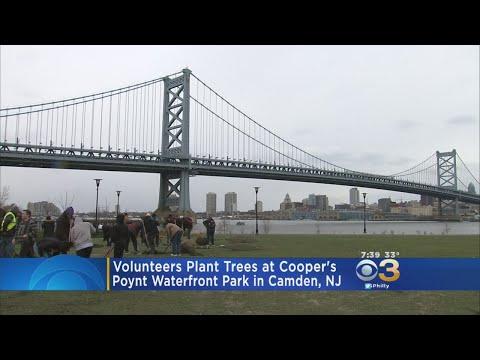 Volunteers Plant Trees At Cooper's Poynt Waterfront In Camden
