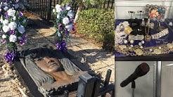 Selena Museum, Grave, Statue, & MORE