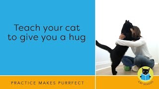 Teach Your Cat To Hug With Clicker Training