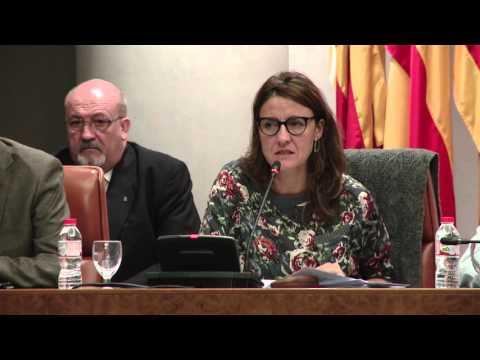 Ple Diputació de Barcelona ordinari d'octubre