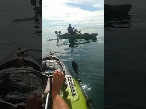 Pescaria de caiaque Falcon, laje de fora. Rio das Ostras.