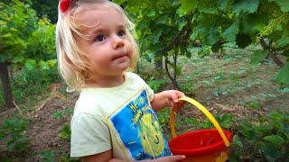 Vlog | Anabella a fost la