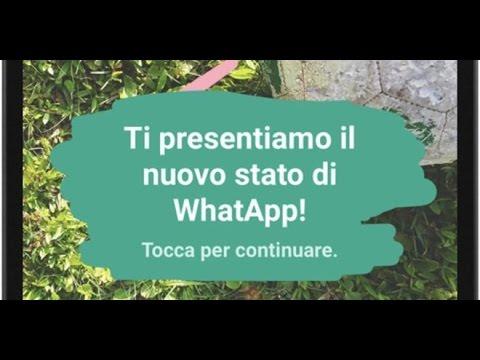 Nuovo aggiornamento Whatsapp: privacy a rischio?