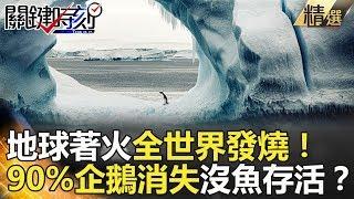 地球著火全世界發燒!90%企鵝消失沒魚存活?- 關鍵時刻精選 馬西屏 陳耀寬 黃創夏 傅鶴齡 王瑞德