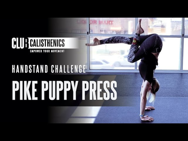 DAY 26 - Puppy Pike Press Handstand