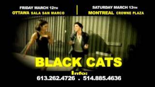 BLACK CATS AND SHAHRAM SHABPAREH CONCERT