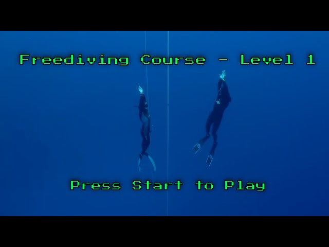 The Best Place to Learn to freedive Hawaii