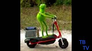 (TWIN BEATS) Kermit the frog- not easy being green ( Twin Beat…