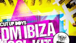 The Cut Up Boys - EDM Ibiza Tool Kit - Monster Sounds Samples