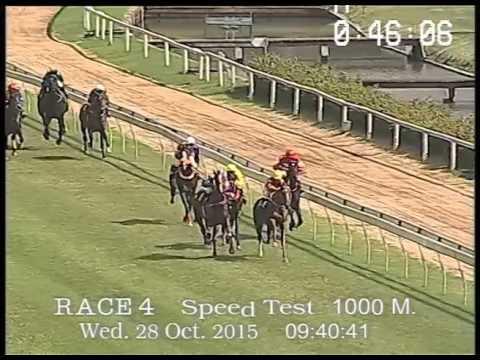 ผลการทดสอบม้าแข่งใหม่สนามฝรั่ง 28 ตุลาคม 2558
