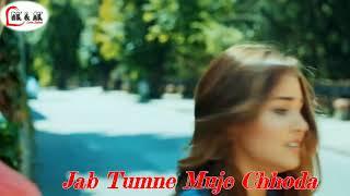 El Lenguaje De Las Metaforas Song  Hindi Version Lyrics Whats App Status