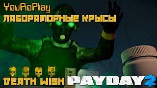 Payday 2. Как пройти лабораторные Крысы.Жажда смерти.Death Wish. Trick or Treat!