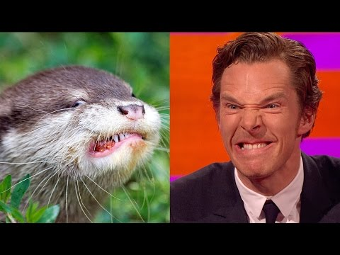 Thumbnail: Benedict Cumberbatch's resemblance to an otter – The Graham Norton Show: Series 18 Episode 9 – BBC